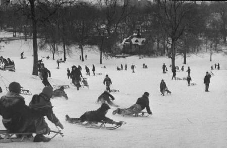 Boys and girls playing and sledding in Central Park after snow fall. 2