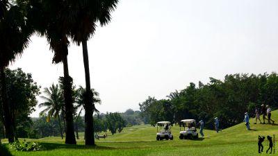 Palm Hills Carts