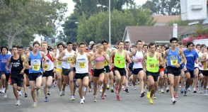 cypress runners
