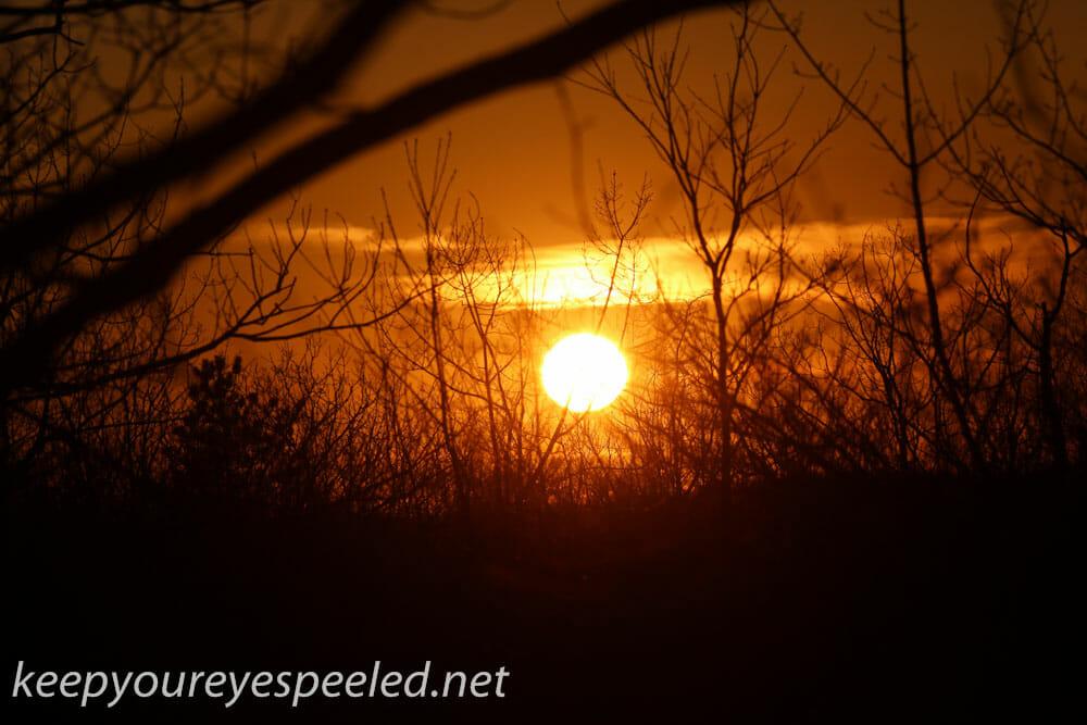 Sunset (7 of 20)