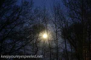 Full moon (2 of 3)