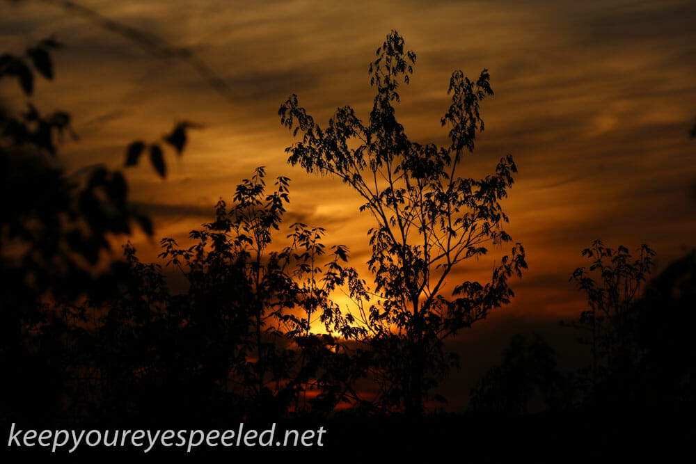 greenridge sunset (12 of 13)