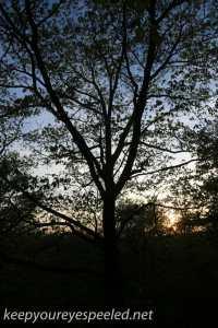 greenridge sunset (3 of 13)