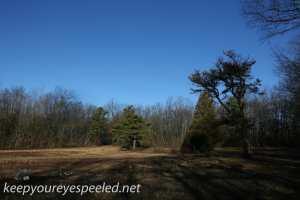 Upper lehigh Cemetery  (17 of 39)