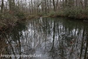 Hazle Brook (42 of 45)