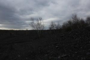 Hazle Brook hike 091