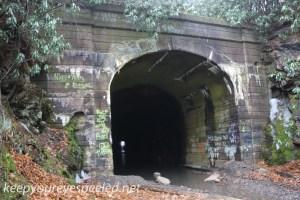 Lofty tunnel  (3 of 18)