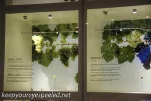 Indian Pacific Adelaide city walk wine institute -4