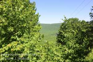 Weiser State Forest -53