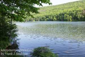 roaring creek hike -48