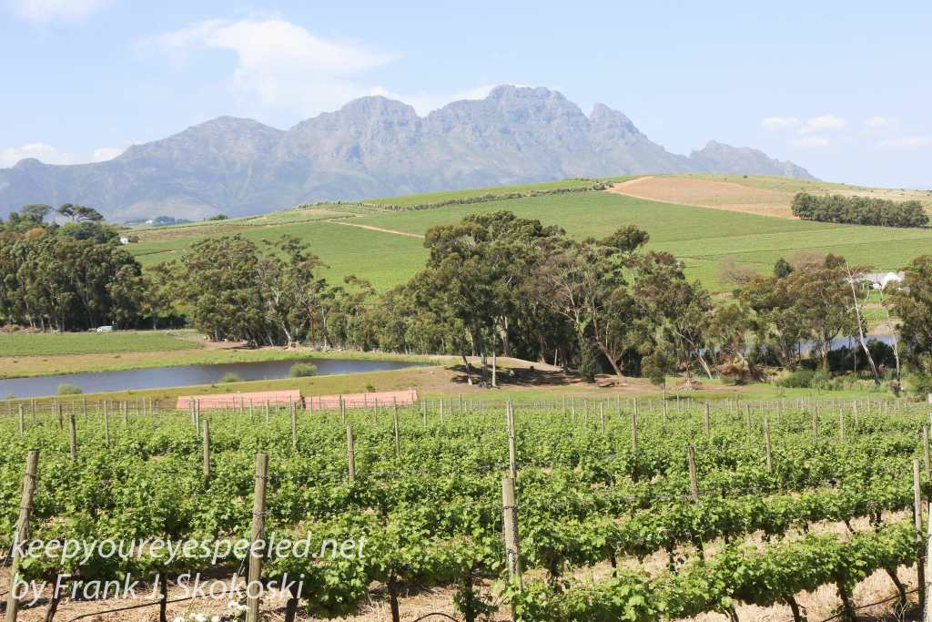 south-africa-boschendal-winery-29