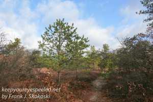 rails-to-trails-hike-8