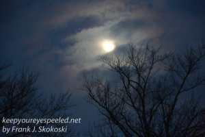 Mountain View Cemetery moon -16