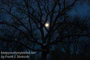 Mountain View Cemetery moon -6