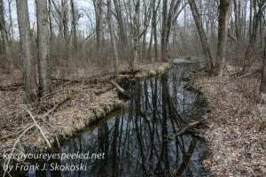 PPL Wetlands-1