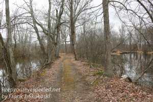PPL Wetlands-9