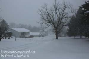 blizzard walk-17