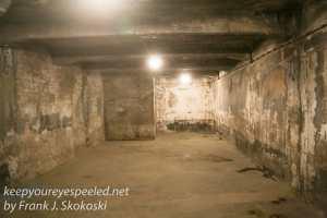 Auschwitz exhibits gas chambers -28