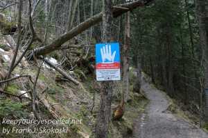 Poland Day five Kalatowki dolina bialego hike -37
