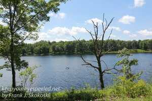 view of moosehead lake