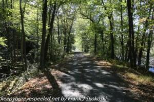 tree line tow path