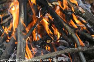 close up of flames in fire