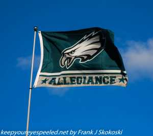 Philadelphia Eagles flag