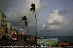 palm trees and clouds along Atlantic Ocean shore