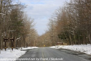 wooded road near Hawk Mountain