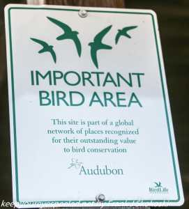 Audubon sign at Middle Creek