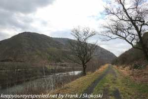 trees and view of mountains and lehigh river on trail