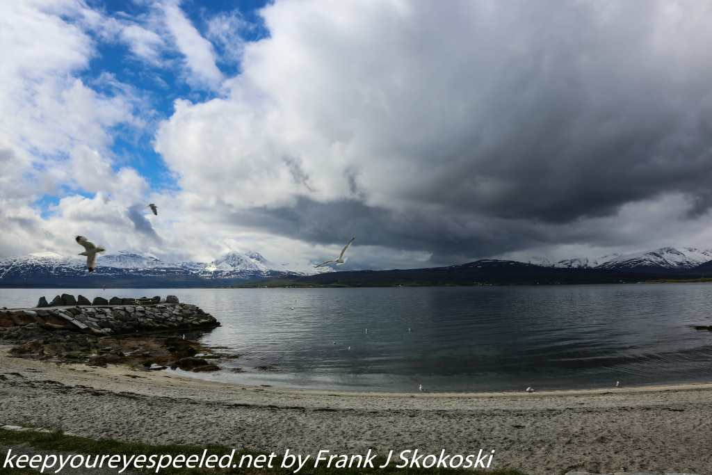 Norway Day Nine Tromso beach (27 of 38)