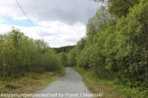 wooded trail Tromso