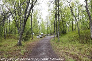 trail to Botanical Gardens