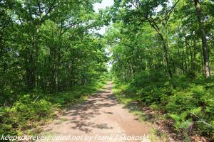trail in gamelands