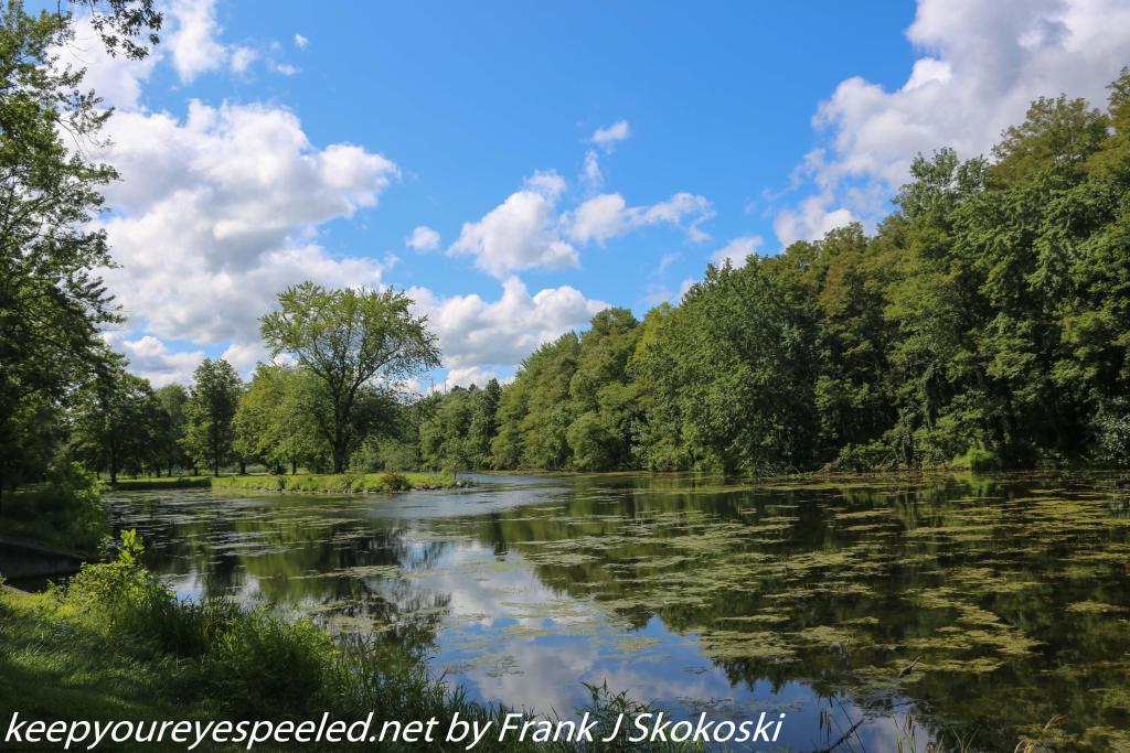 PPL Wetlands (36 of 53)