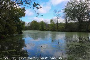 late summer at PPL wetlands lake