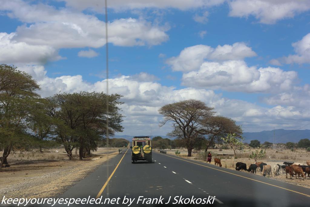 Tanzania Day seven drive to Tarangire (23 of 32)