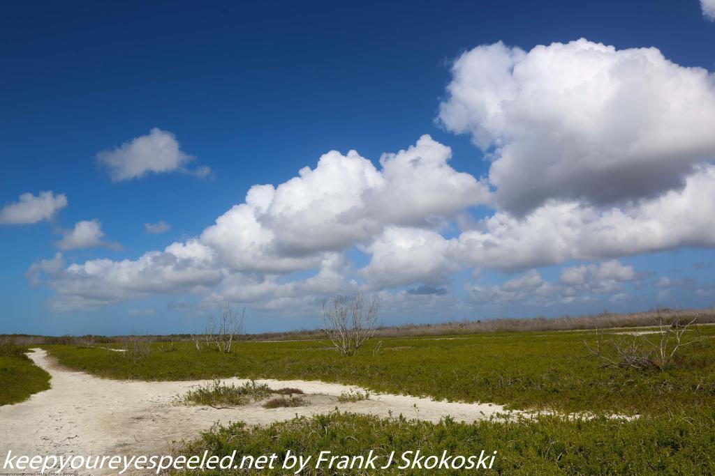 Fordia Day Flamingo Coastal Hike (28 of 50)
