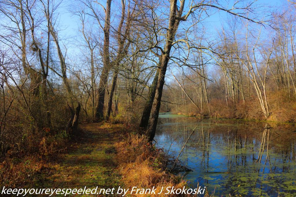 PPL Wetlands (3 of 47)