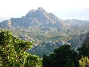 Corsica, 2008