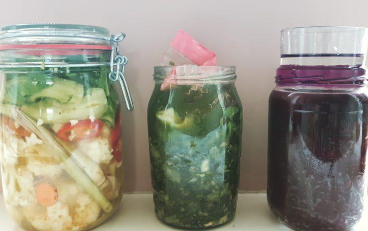 groentefermentatie
