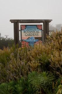 Mendocino Botanical Gardens