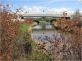 looking-back-creek-bridge