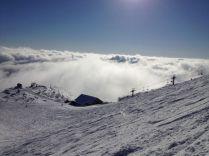 happo summit
