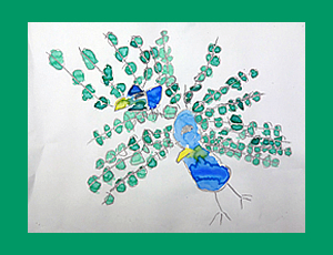 20161202peacock01