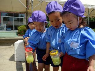 2歳児・色水遊び