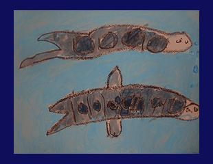 shark34