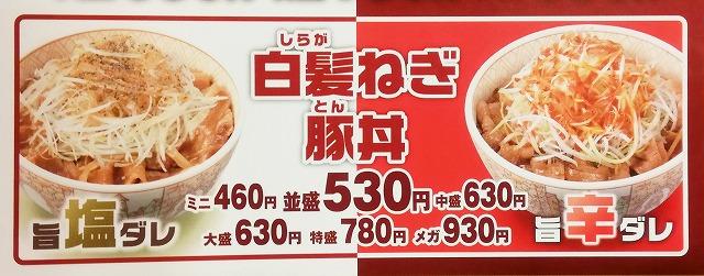 白髪ねぎ豚丼