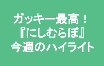 にしむらぼ ブログ運営報告